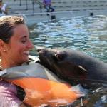 Faunia inaugura el verano bañándose con osos marinos