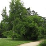 El (desconocido) Parque del Oeste de Madrid