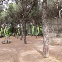 Zona de picnic junto al búnker del Parque del Oeste