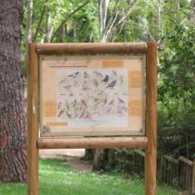 En Parque del Oeste se hacen anillamientos de aves para su estudio y protección