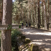 Entorno del Chorro de Navafría, en Segovia