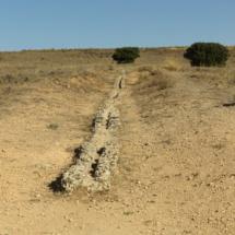 Restos del acueducto de Segóbriga