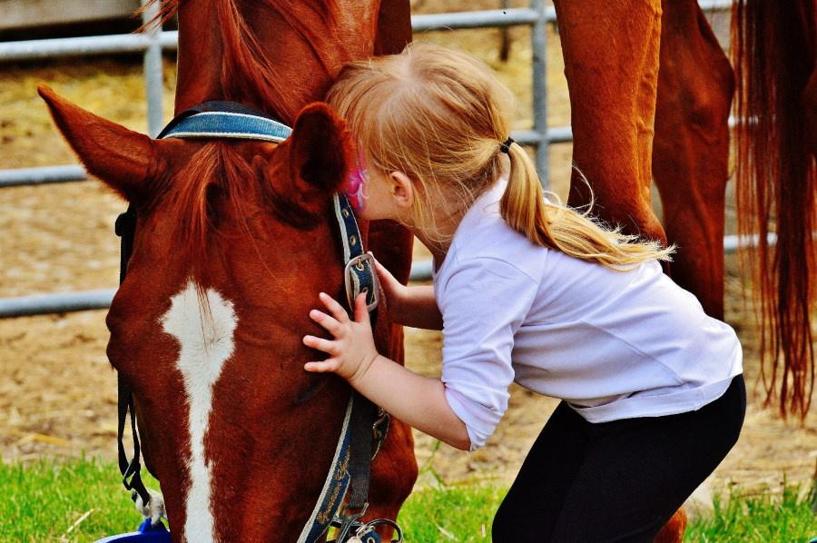 La Madrid Horse Week ofrece un montón de actividades para niños y niñas