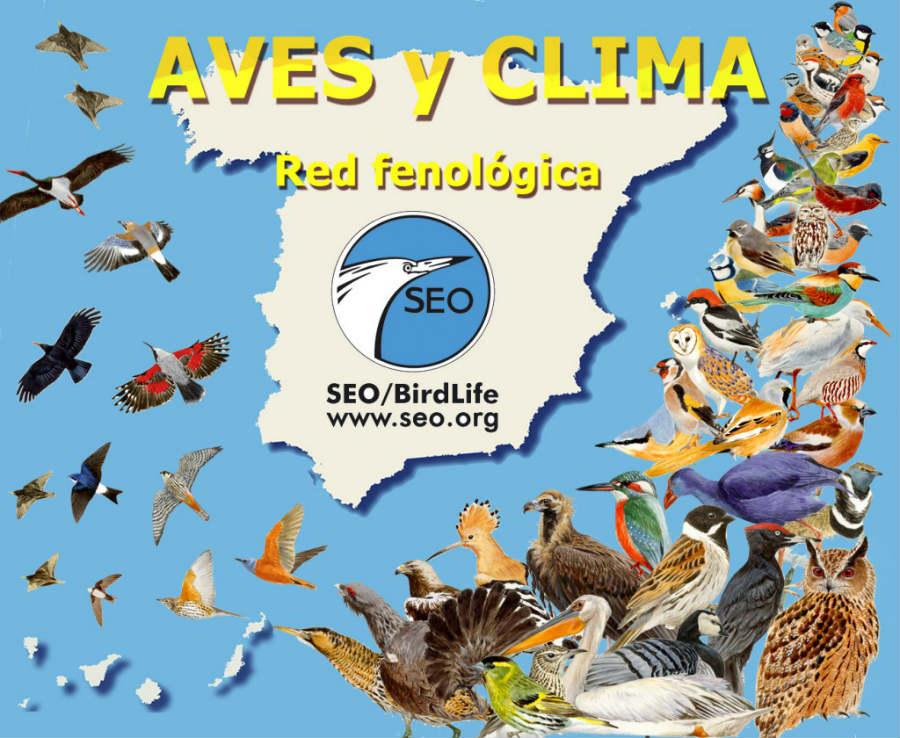 SEO/BirdLife organiza una gran variedad de actividades para familias en España