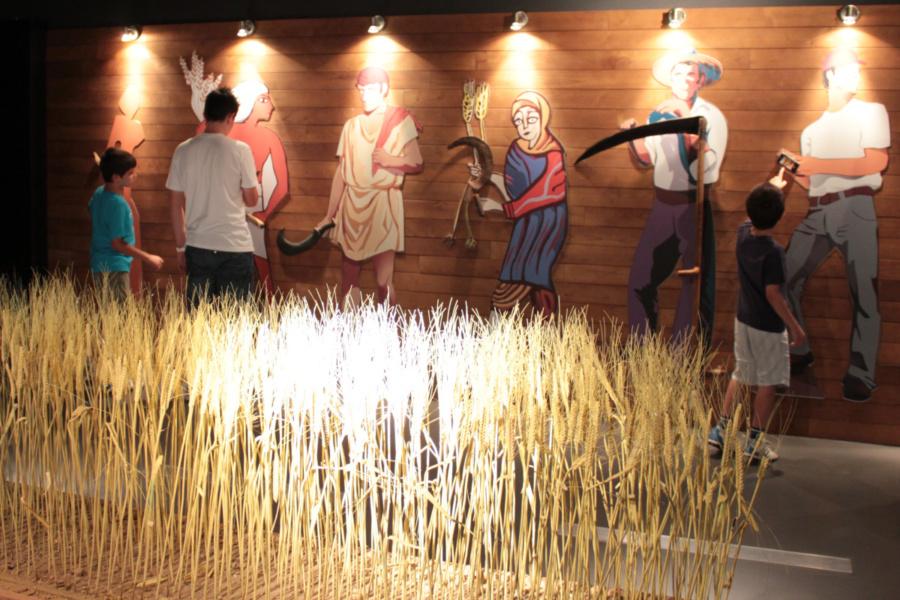 Vista de una de las salas del Museo del Pan de Mayorga