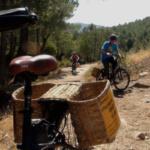 Excursión en… ¿burricleta? por la sierra de Madrid