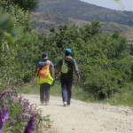 Consejos para elegir el mejor campamento de verano para tus peques