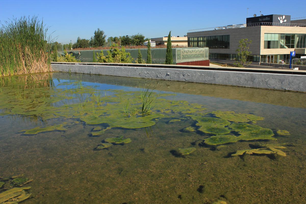 Paseo por el recinto de la Expo del Agua de Zaragoza, con peques
