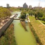 Vista de un tramo de los jardines del antiguo cauce del Turia, en Valencia