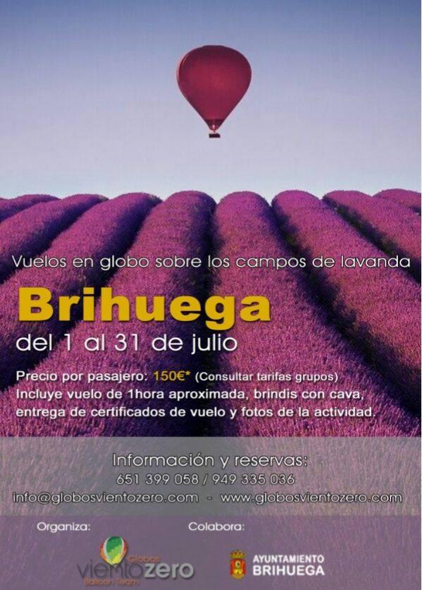 Promoción de un paseo el globo aerostático sobre los campos de lavanda en flor