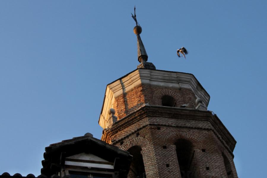 Campanario de una iglesia de Valladolid