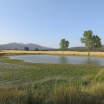 Laguna de Tamajón