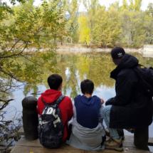 Recorremos un bosque finlandés en Rascafría, Madrid