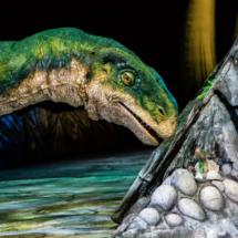 Plateosaurus - Photo by Patrick Murphy