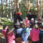 'Pequesetas': búsqueda de setas para familias con niños