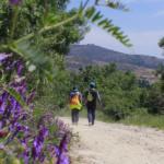 6 rutas y excursiones en Madrid para Semana Santa