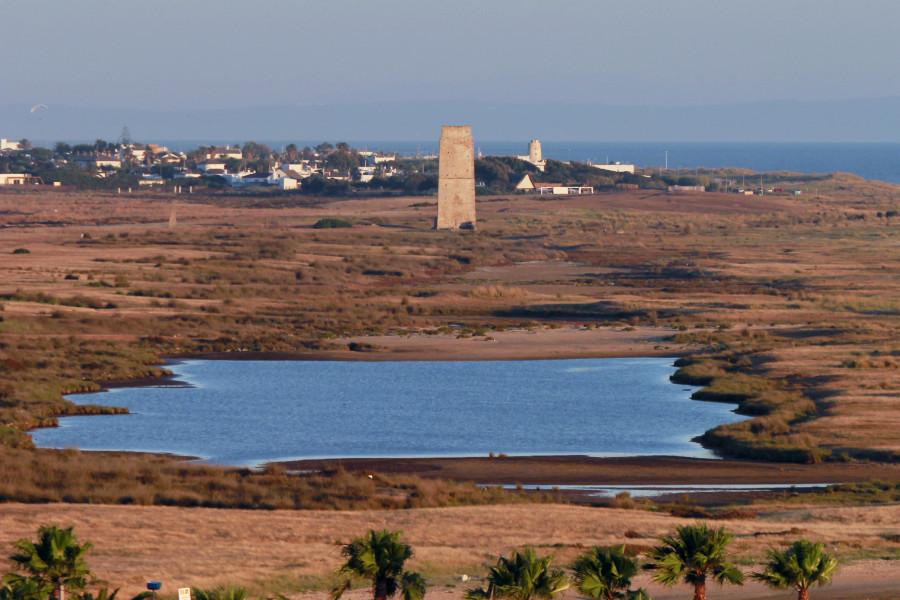 Hacemos una ruta del atún en la costa de Cádiz