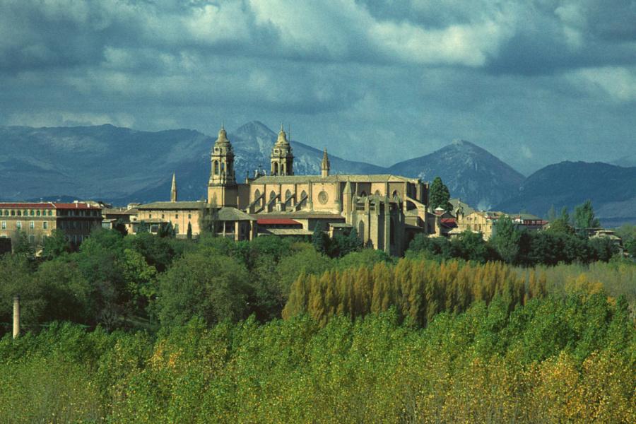 Vista de las murallas y catedral de Pamplona