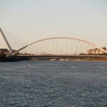 Puente del Alamillo de Santiago Calatrava
