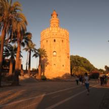 Torre-del-Oro_Sevilla (4)