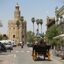 Torre-del-Oro_Sevilla (6)