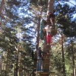 Parques de aventura: saltando y trepando de árbol en árbol