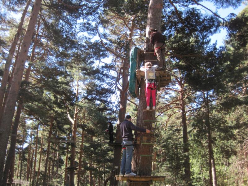 Plan aventura con los peques: de árbol en árbol