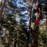 Plan familiar en el campo... trepando a los árboles