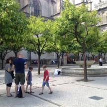 Entorno de la Catedral de Sevilla