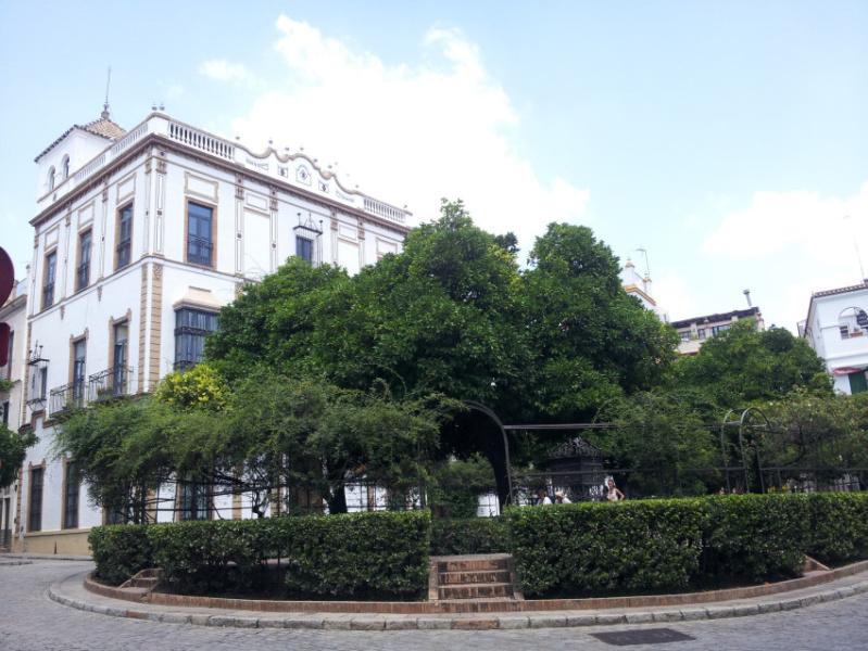Vista de la plaza de Santa Cruz