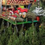 Fechas y horarios del Mercado navideño de Santa Lucía, en Barcelona, y del tió