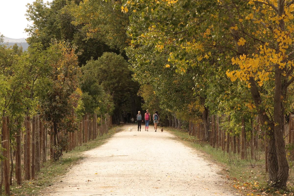 Lugares que visitar en otoño, con peques