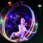 Escena de un espectáculo navideño del Circo Price