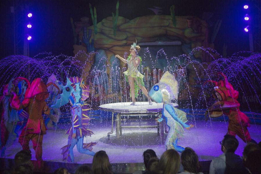 Circo de Agua, 2019