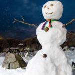Actividades y campamentos de Navidad en Faunia 2020