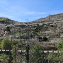 Entorno del restaurante El Torcas del Valle del Jerte