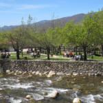 Merendero en el entorno del río Jerte