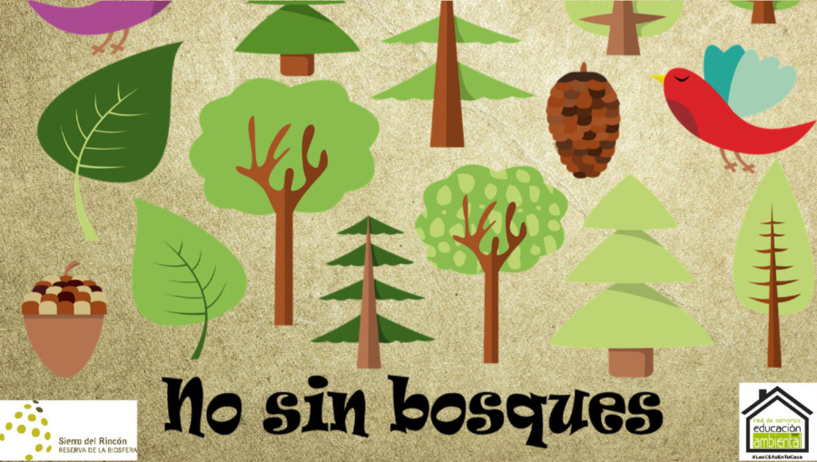'No sin bosques', un nuevo juego de los amigos de la Sierra del Rincón.