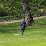 Te proponemos 15 parques y jardines urbanos para disfrutar en famlia.