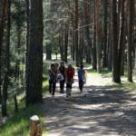 30 excursiones y rutas por España para hacer con peques