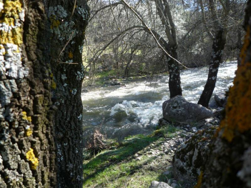 Entorno del Puente Romano de Valdemaqueda