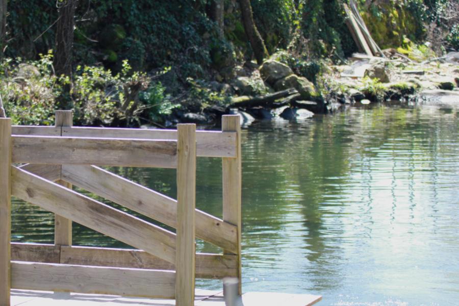 Instalaciones de la piscifactoría de truchas del Valle del Jerte