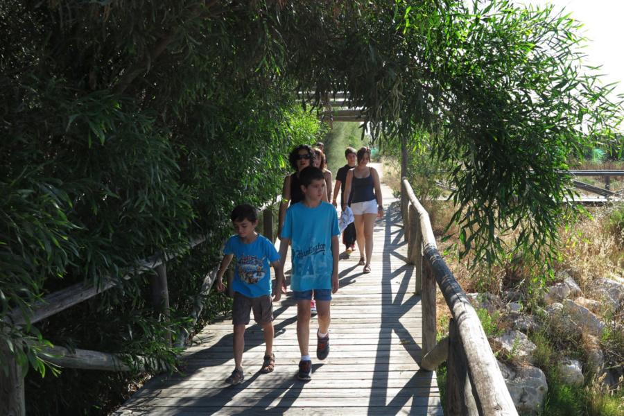 Te sugerimos fantásticas excursiones para recorrer la costa de Cádiz, con los peques