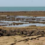 Qué son y para qué sirven los corrales de pesca de Chipiona