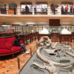 Visitamos el Museo Geominero en familia
