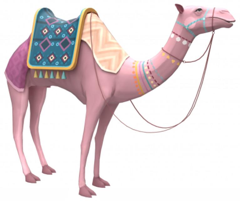 Camello Simón