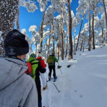 Hacemos una ruta con raquetas de nieve por Guadarrama