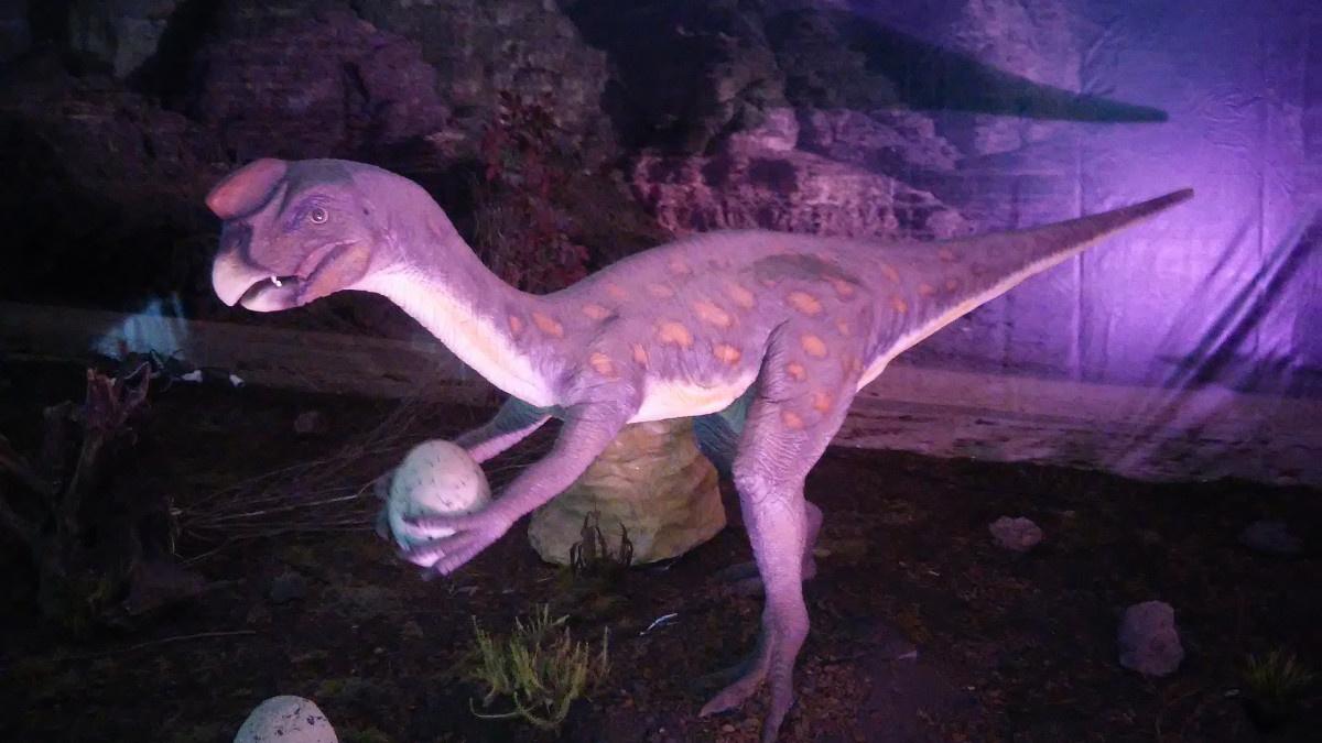 Así es 'Dinosaurs World', la expo de dinosaurios de Bilbao