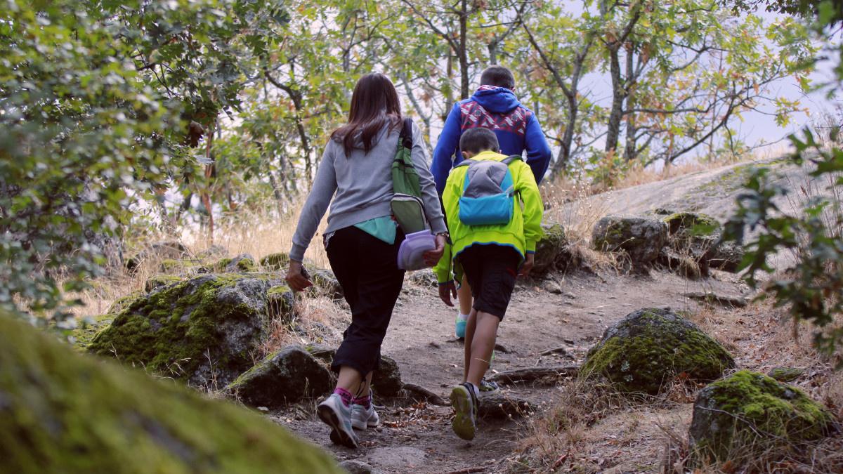 Hacemos una ruta por el Bosque de la Herrería, en Madrid