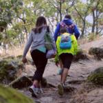 Ruta con niños por el Bosque de la Herrería y Silla de Felipe II